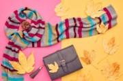 秋のファッションイメージ(女性)